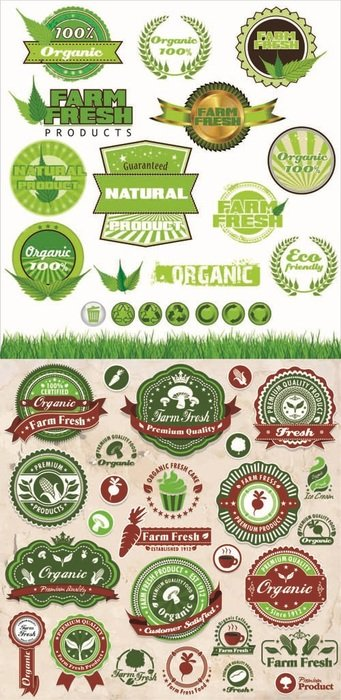 Organic Food Labels drawing