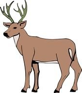 drawing of a brown deer with horns on a white background