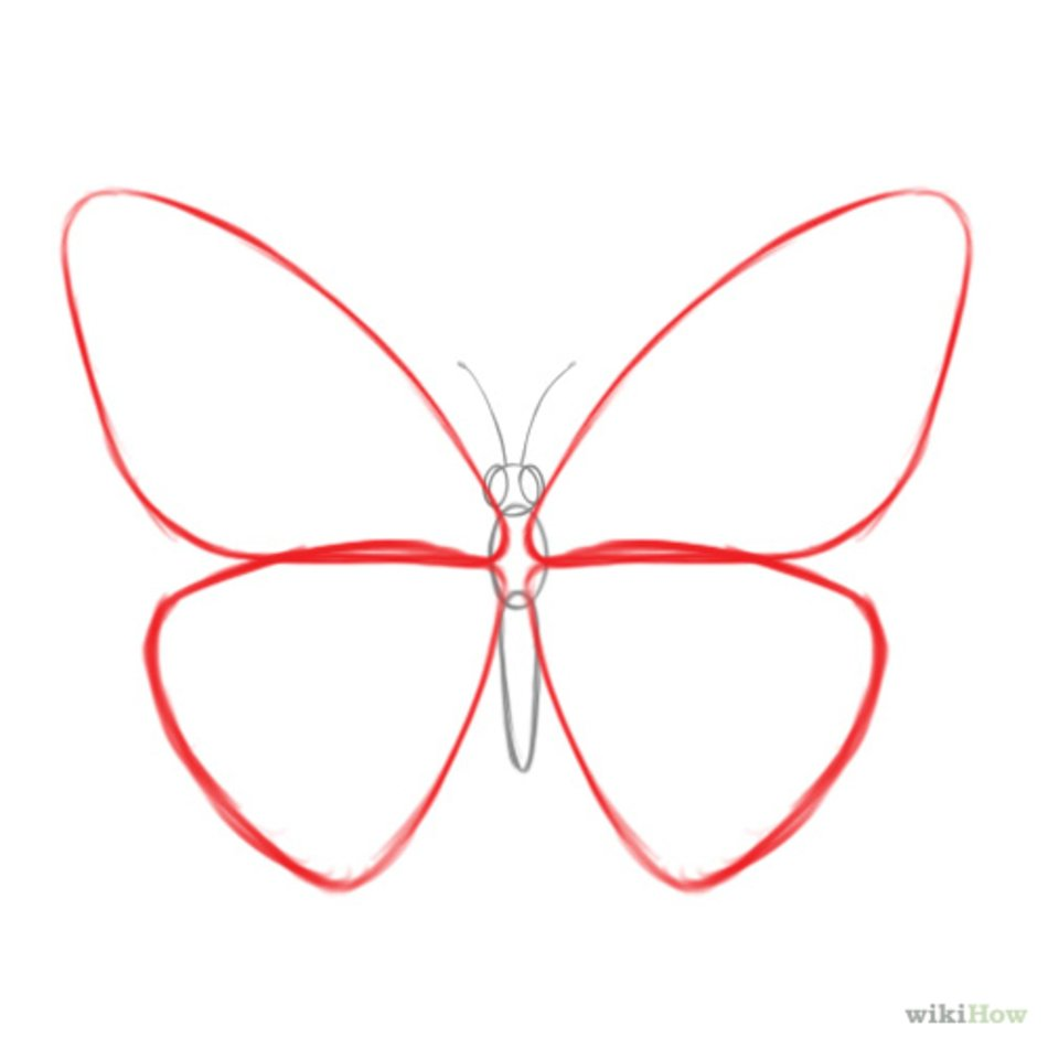 How to draw a simple butterfly