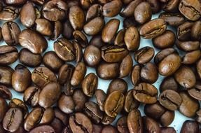 roasted aromatic coffee beans