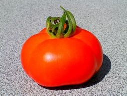 photo of the red tomato