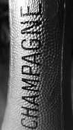 inscription champagne on the neck of the bottle