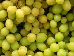 green grapes fruit