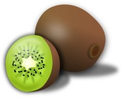 cut green kiwi drawing