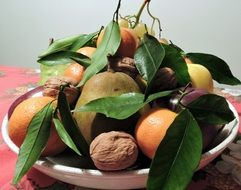 apple, orange, tangerine, grapes and walnut on a tray