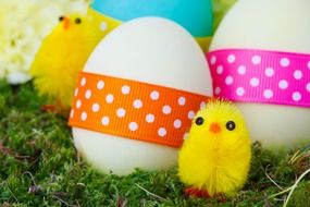 celebration chicken color eggs and yellow decorative chickens