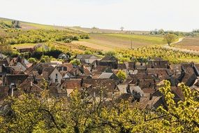 beautiful village landscape with vineyards, france, burgundy, irancy