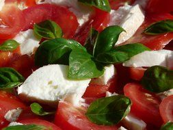 salad with tomato, mozzarella and basil