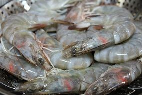 closeup photo of the steamed shrimps