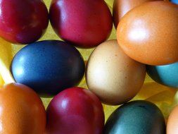 easter eggs colorful paint