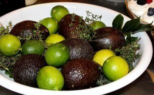 Green limes and black avocadoes in the white bowl