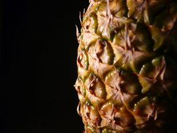 pineapple fruit exotic