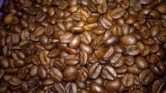roasted flavored coffee beans