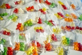 haribo colorful gelatin gummi bears packed sachets