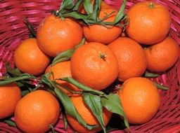 tangerine orange fruit in basket