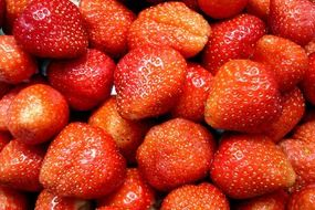 sweet delicious strawberries fruit