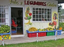 fruits and vegetables store building