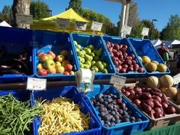 vegetables and fruits in blue boxes on the market