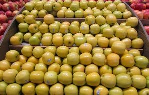 yellow apples on the counter in the market