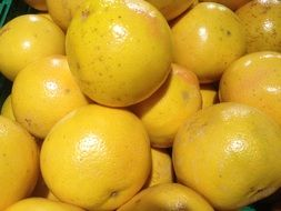 a lot of yellow grapefruit lie in a pile