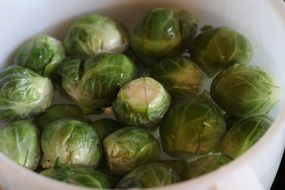 Brussels sprouts in water