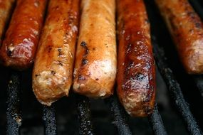 grilled sausages on the grill