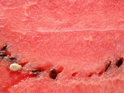 closeup photo of the red watermelon