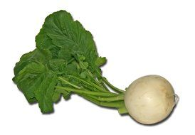 turnip vegetables cook root