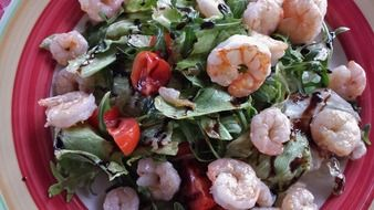 salad of greens and shrimp