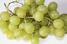 green sweet fresh grapes