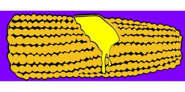 corn cob drawing