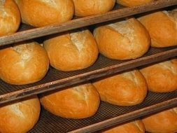 fresh baked bread from the oven