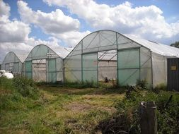 greenhouses for agriculture