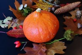 orange pumpkin on the background of autumn decor