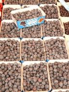 sloes berries on the market