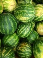 a lot of watermelons in a market