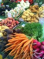 colorful fresh vegetables at market