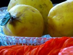quinces in a plate of glass
