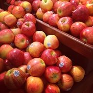 Red organic natural healthy red apples in the store