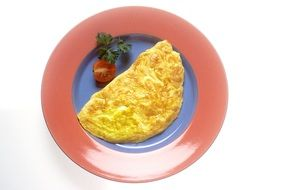 omelet with tomatoes on a plate
