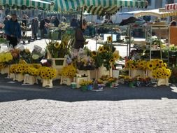 bunches of sunflowers on agriculture market
