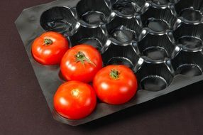 four tomatoes per pack