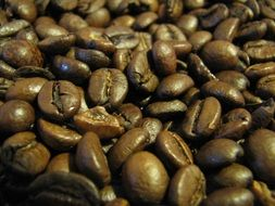roasted brown fragrant coffee beans