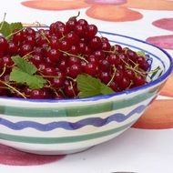 red currants in a ceramic bowl