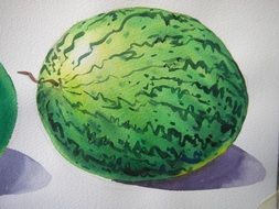 watercolor picture with watermelon