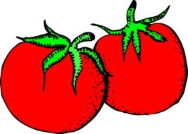 drawing of red tomatoes with green ponytails