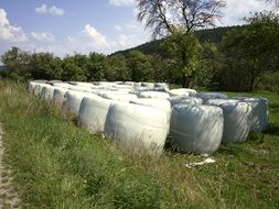 Packed vegetables and fruits in the white silage bags