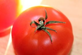 red ripe tomato vegetable