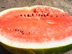 Half a watermelon with seeds