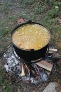 cooking soup over a campfire